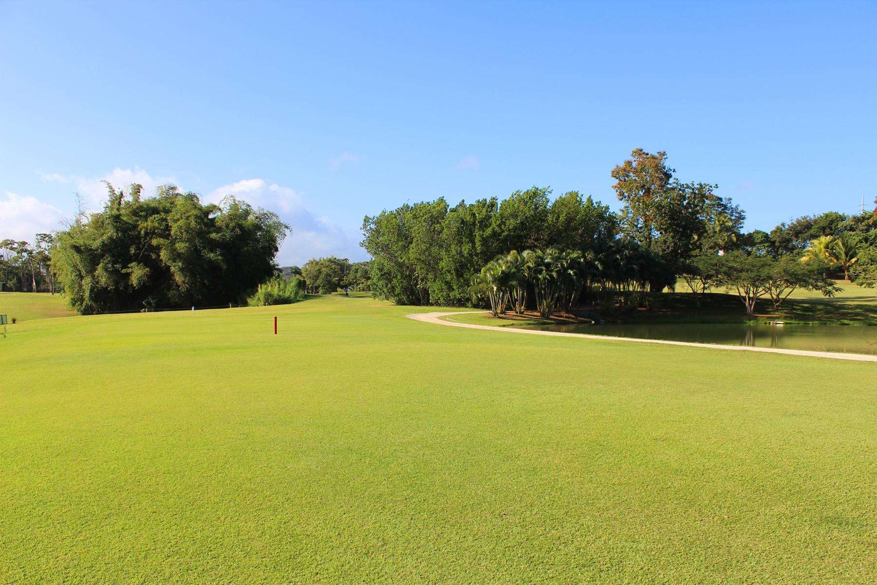 Río Bayamón Golf Course